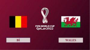 Nhận định Bỉ vs Wales, 02h45 ngày 25/03/2021, Vòng loại World Cup 2022